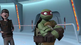 Teenage Mutant Ninja Turtles: Season 4: The Cosmic Ocean
